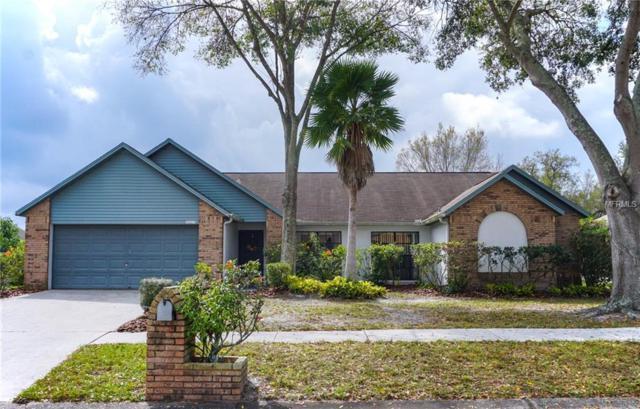 10319 Ashley Oaks Drive, Riverview, FL 33578 (MLS #T3157945) :: Team Bohannon Keller Williams, Tampa Properties