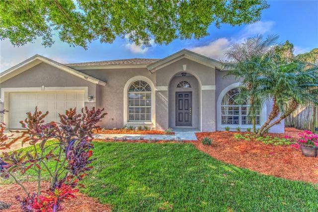 517 Tuscanny Street, Brandon, FL 33511 (MLS #T3157990) :: Welcome Home Florida Team