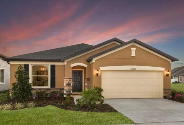 18924 Willowmore Cedar Drive, Lutz, FL 33558 (MLS #T3158017) :: Andrew Cherry & Company