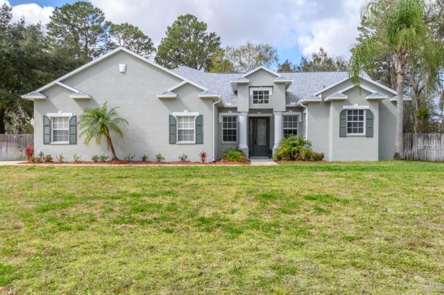 11311 Tralee Drive, Riverview, FL 33569 (MLS #T3158046) :: The Duncan Duo Team