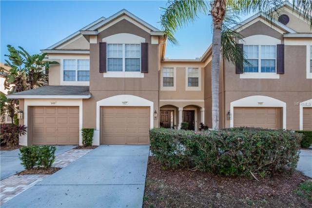 8487 Sandy Beach Street, Tampa, FL 33634 (MLS #T3158066) :: McConnell and Associates