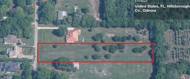 19141 Rogers Road, Odessa, FL 33556 (MLS #T3158071) :: Griffin Group