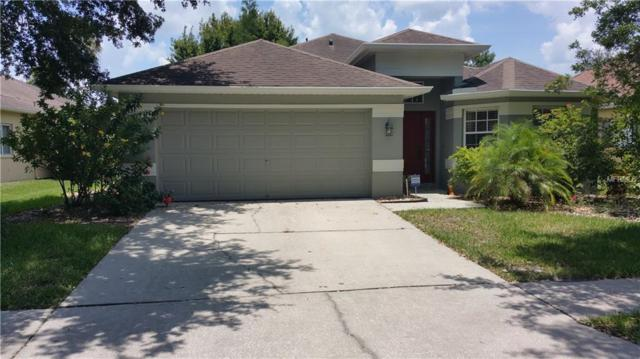19111 Dove Creek Drive, Tampa, FL 33647 (MLS #T3158072) :: Team Bohannon Keller Williams, Tampa Properties