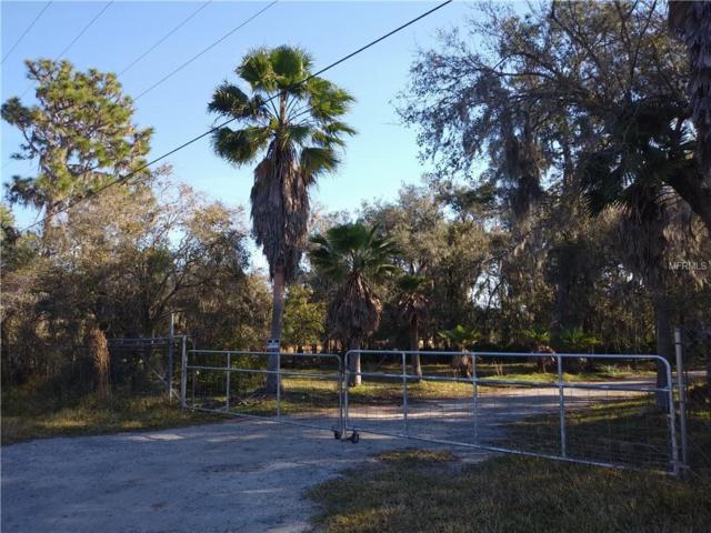 14620 Dupree Road, Wimauma, FL 33598 (MLS #T3158092) :: Griffin Group