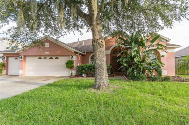 4508 River Overlook Drive, Valrico, FL 33596 (MLS #T3158125) :: Jeff Borham & Associates at Keller Williams Realty