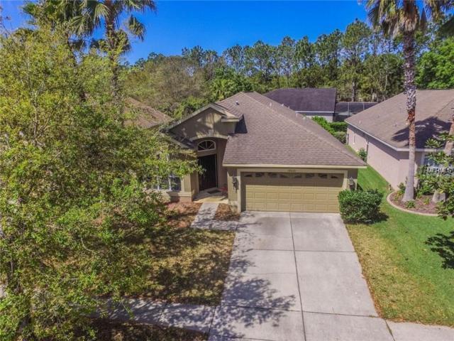 18620 Le Dauphine Place, Lutz, FL 33558 (MLS #T3158137) :: Team Bohannon Keller Williams, Tampa Properties
