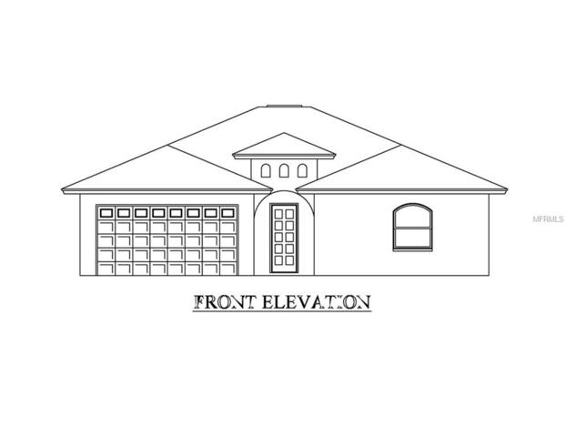 19117 Alice Circle, Lutz, FL 33558 (MLS #T3158154) :: Griffin Group