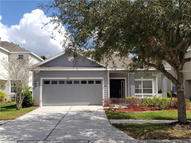 9440 Leatherwood Avenue, Tampa, FL 33647 (MLS #T3158171) :: Welcome Home Florida Team