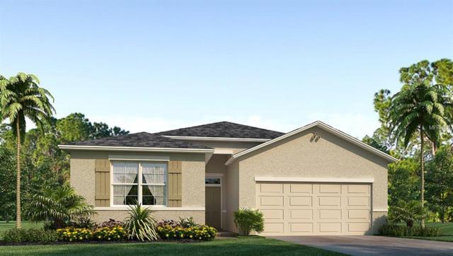 2538 Knight Island Drive, Brandon, FL 33511 (MLS #T3158226) :: Welcome Home Florida Team