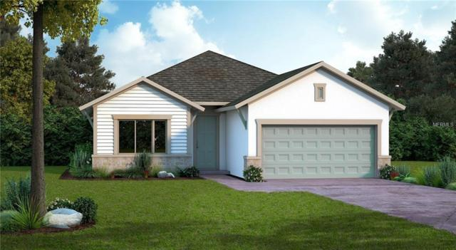 2924 Marlberry Lane, Clermont, FL 34714 (MLS #T3158306) :: RealTeam Realty