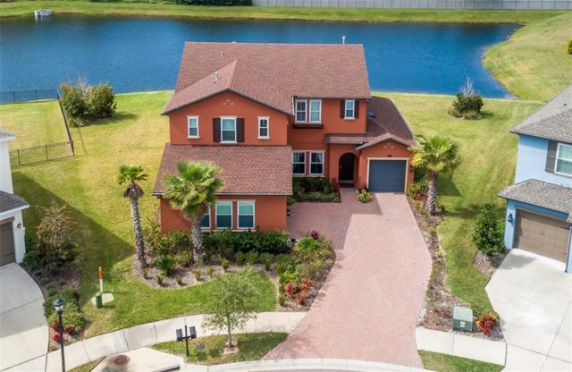 14328 Avon Farms Drive, Tampa, FL 33618 (MLS #T3158335) :: Delgado Home Team at Keller Williams