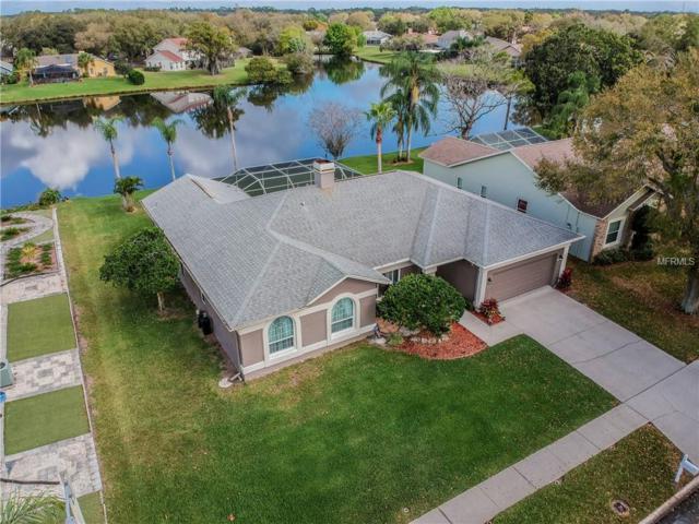 1408 Queensbury Avenue, Valrico, FL 33594 (MLS #T3158393) :: Welcome Home Florida Team