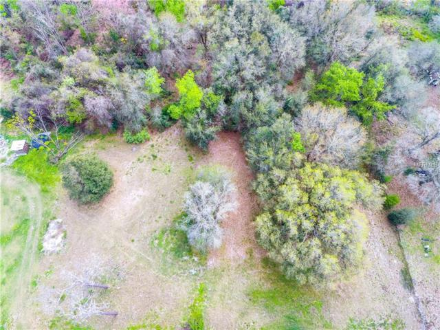 1085 Victoria Lane, Lakeland, FL 33809 (MLS #T3158514) :: Griffin Group