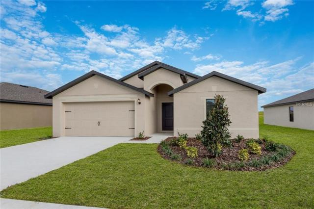 Address Not Published, Dundee, FL 33838 (MLS #T3158551) :: RE/MAX Realtec Group