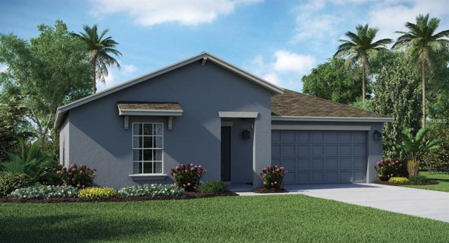 141 Taft Drive, Davenport, FL 33837 (MLS #T3158554) :: Gate Arty & the Group - Keller Williams Realty