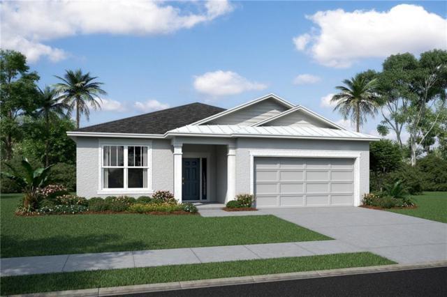 5218 Turtle Bay Drive #3129, Wesley Chapel, FL 33545 (MLS #T3158569) :: The Figueroa Team