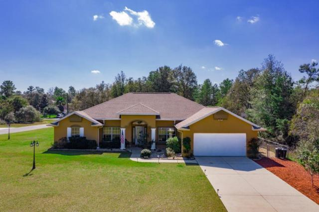 4378 SW 169TH Place, Ocala, FL 34473 (MLS #T3158571) :: Griffin Group