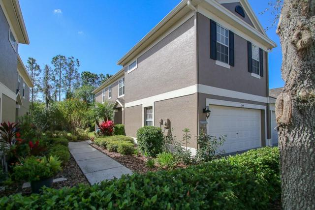 11144 Windsor Place Circle, Tampa, FL 33626 (MLS #T3158583) :: Remax Alliance