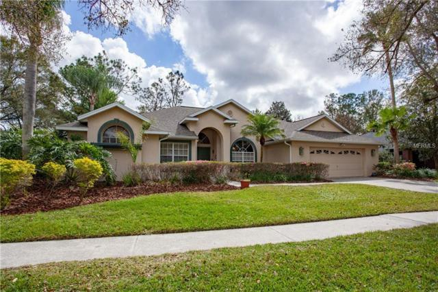 3802 Spruce Pine Drive, Valrico, FL 33596 (MLS #T3158594) :: Welcome Home Florida Team