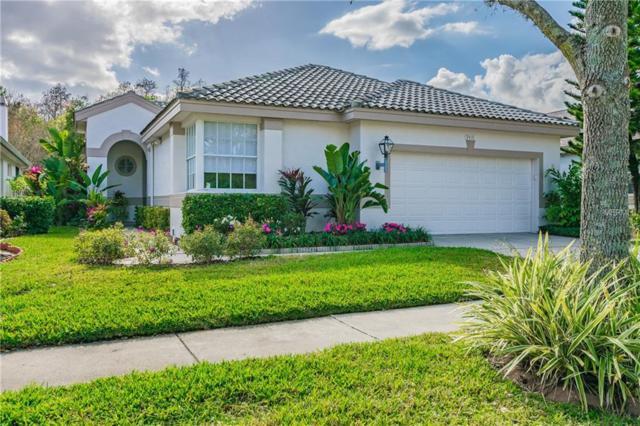 9410 Edenton Way, Tampa, FL 33626 (MLS #T3158625) :: The Edge Group at Keller Williams