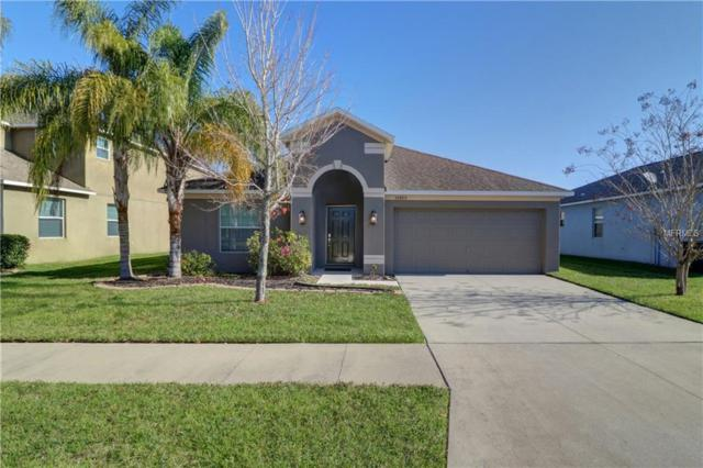 10860 Standing Stone Drive, Wimauma, FL 33598 (MLS #T3158671) :: The Light Team