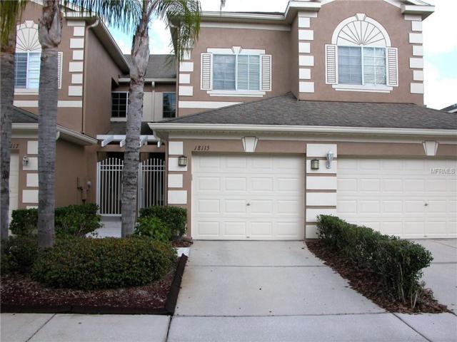 18115 Nassau Point Drive, Tampa, FL 33647 (MLS #T3158726) :: Lockhart & Walseth Team, Realtors