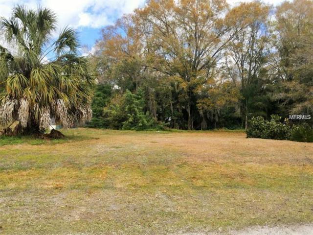 Ocean Pines Drive, Land O Lakes, FL 34639 (MLS #T3158743) :: The Duncan Duo Team