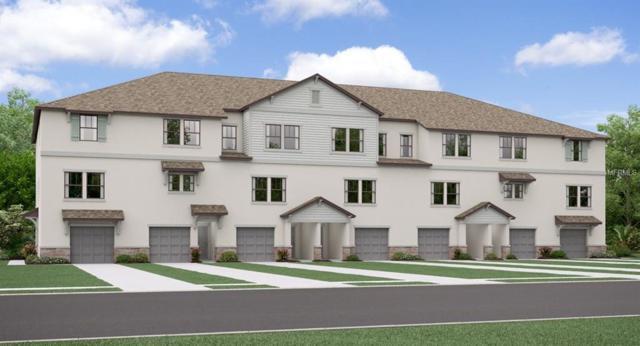 8652 Candida Lane, Port Richey, FL 34668 (MLS #T3158752) :: Lock & Key Realty
