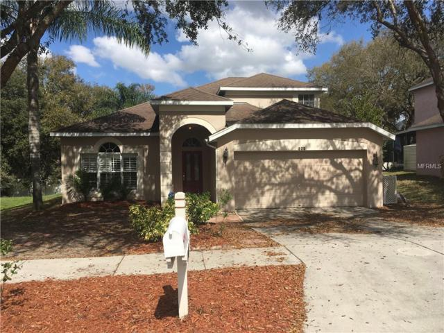 809 Crest Top Trail, Valrico, FL 33594 (MLS #T3158779) :: Welcome Home Florida Team