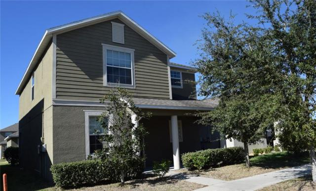 13405 Lake Monroe Place, Riverview, FL 33579 (MLS #T3158873) :: The Duncan Duo Team
