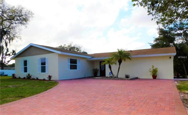 6260 Clay Court, Spring Hill, FL 34606 (MLS #T3158875) :: RE/MAX Realtec Group