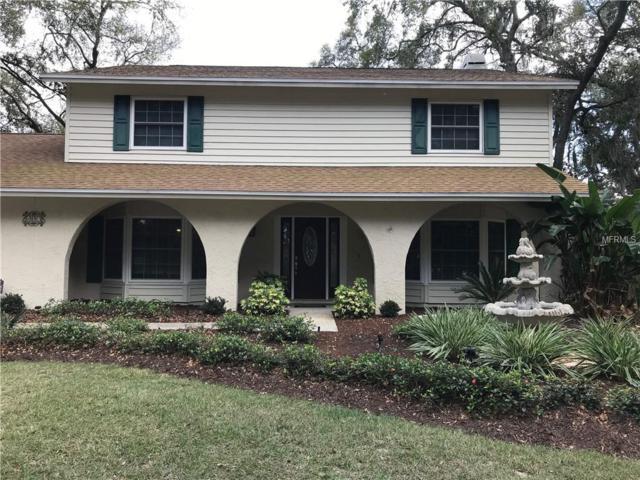 407 Bryan Oak Avenue, Brandon, FL 33511 (MLS #T3158910) :: The Edge Group at Keller Williams