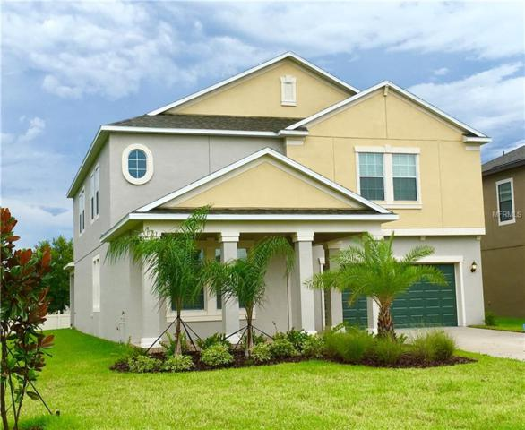 11704 Thicket Wood Drive, Riverview, FL 33579 (MLS #T3159162) :: Medway Realty