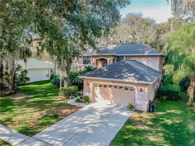 5336 Twin Creeks Drive, Valrico, FL 33596 (MLS #T3159233) :: The Duncan Duo Team