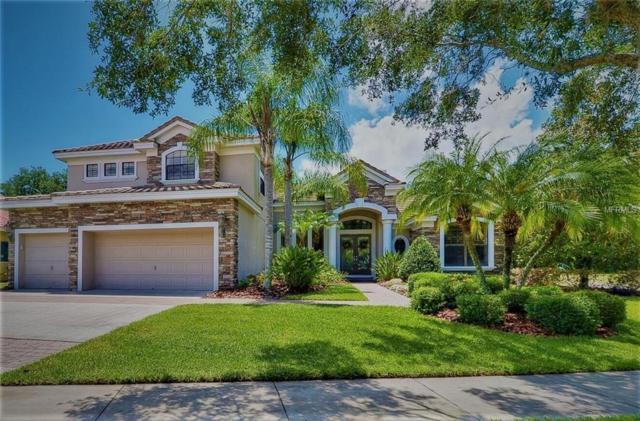 9807 Tree Tops Lake Road, Tampa, FL 33626 (MLS #T3159487) :: Premium Properties Real Estate Services