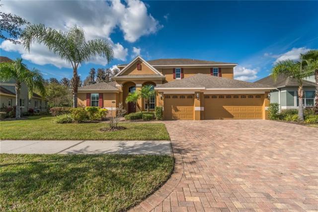 19120 Sweet Clover Lane, Tampa, FL 33647 (MLS #T3159528) :: Medway Realty