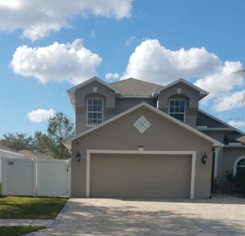 12425 Southbridge Terrace, Hudson, FL 34669 (MLS #T3159657) :: Cartwright Realty