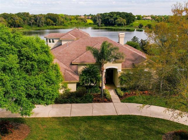 12641 Tradition Drive, Dade City, FL 33525 (MLS #T3159679) :: Homepride Realty Services