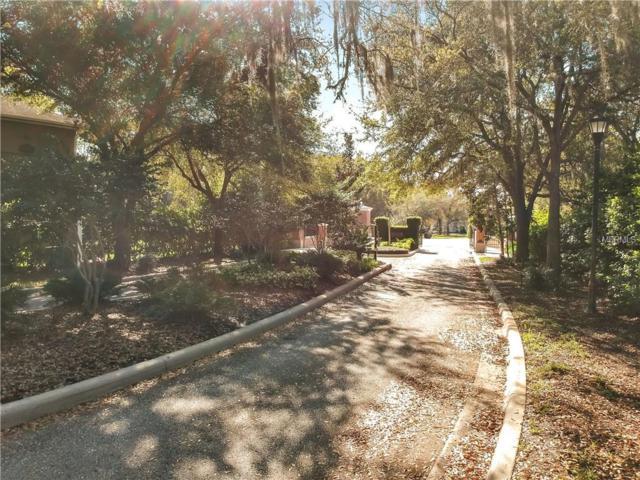 29551 Chapel Park Drive, Wesley Chapel, FL 33543 (MLS #T3159719) :: The Duncan Duo Team