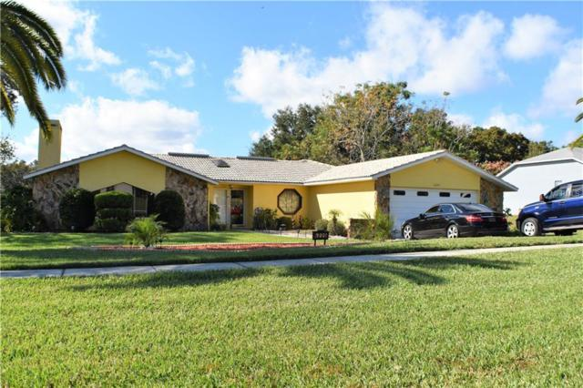 6225 Penna Street, Spring Hill, FL 34609 (MLS #T3159778) :: Mark and Joni Coulter | Better Homes and Gardens
