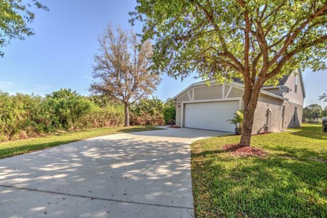 3930 King Bridge Place, Ellenton, FL 34222 (MLS #T3159969) :: Lovitch Realty Group, LLC