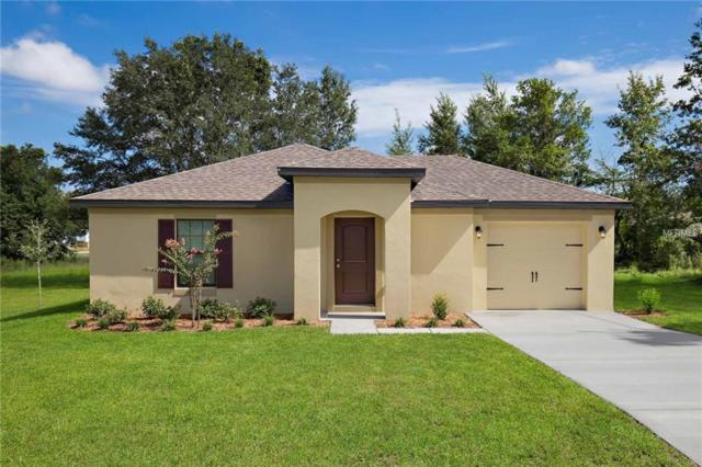 26435 Bertram Road, Brooksville, FL 34602 (MLS #T3160097) :: The Duncan Duo Team