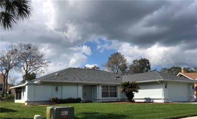 10353 Ventura Drive, Spring Hill, FL 34608 (MLS #T3160154) :: Team Bohannon Keller Williams, Tampa Properties