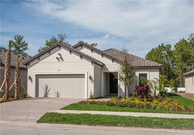 20173 Umbria Hill Drive, Tampa, FL 33647 (MLS #T3160191) :: Medway Realty