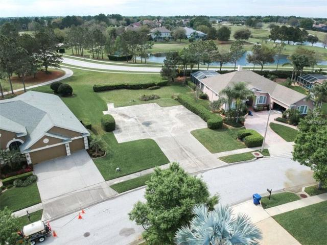 23212 Gracewood Circle, Land O Lakes, FL 34639 (MLS #T3160442) :: The Duncan Duo Team