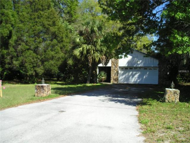 32822 Eiland Boulevard, Wesley Chapel, FL 33545 (MLS #T3160445) :: EXIT King Realty