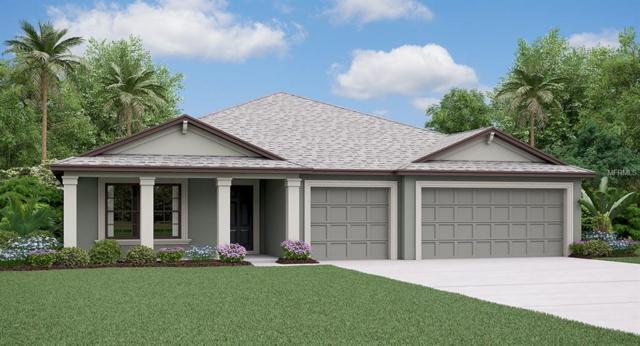 11106 Carlton Fields Drive, Riverview, FL 33579 (MLS #T3160488) :: The Light Team