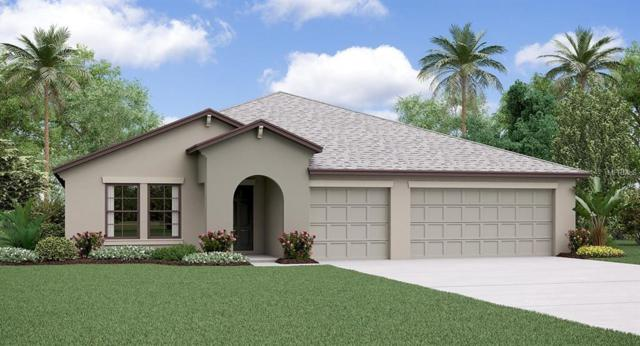 11114 Carlton Fields Drive, Riverview, FL 33579 (MLS #T3160494) :: The Light Team
