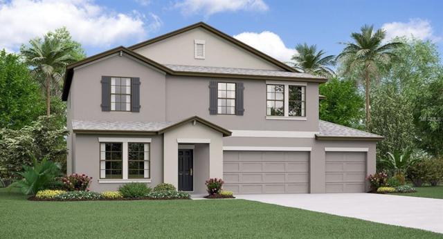 11112 Carlton Fields Drive, Riverview, FL 33579 (MLS #T3160498) :: The Light Team