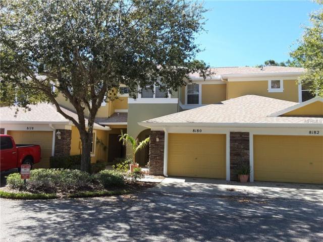 8180 Stone View Drive, Tampa, FL 33647 (MLS #T3160623) :: Team Bohannon Keller Williams, Tampa Properties